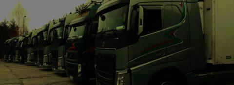 Mezinárodní i vnitrostátní kamionová doprava s orientací na země EU
